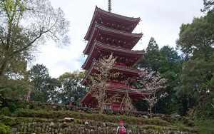 Hachi ju hachi ka sho junrei (八十八ヶ所巡礼) le pèlerinage de 88 temples à Shikoku Accès à la galerie du temple : Chikurinji (竹林寺)