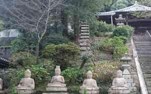 Hachi ju hachi ka sho junrei (八十八ヶ所巡礼) le pèlerinage de 88 temples à Shikoku Accès à la galerie du temple : Jinnein (神恵院)